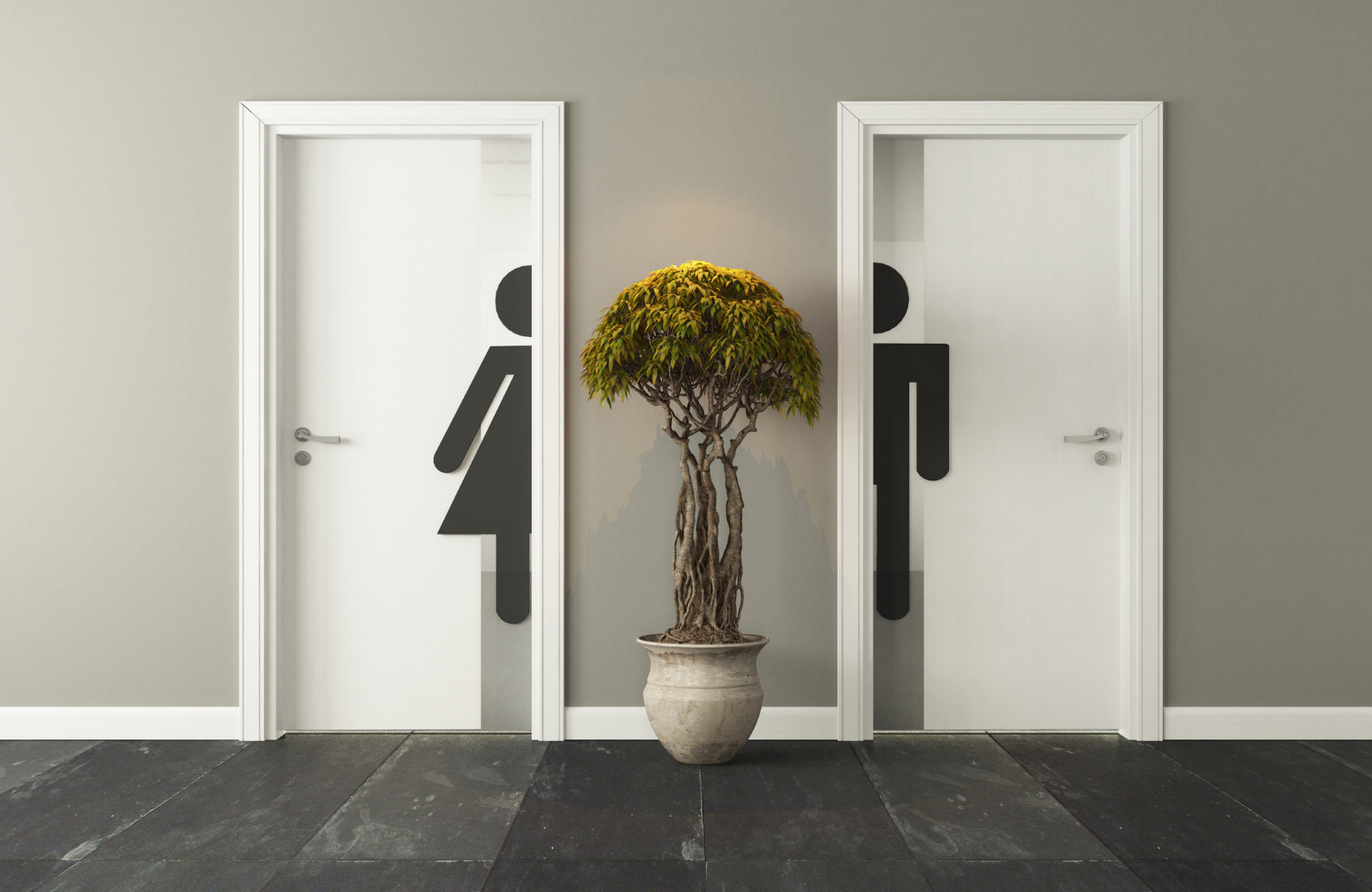 Architects and Designers: Upcoming clarification to planning guidance and building regulations on washrooms